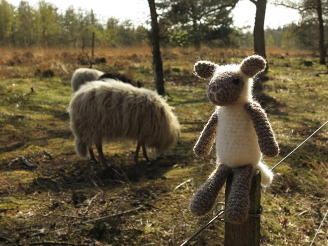 crochet sheep, gehaakt sheep
