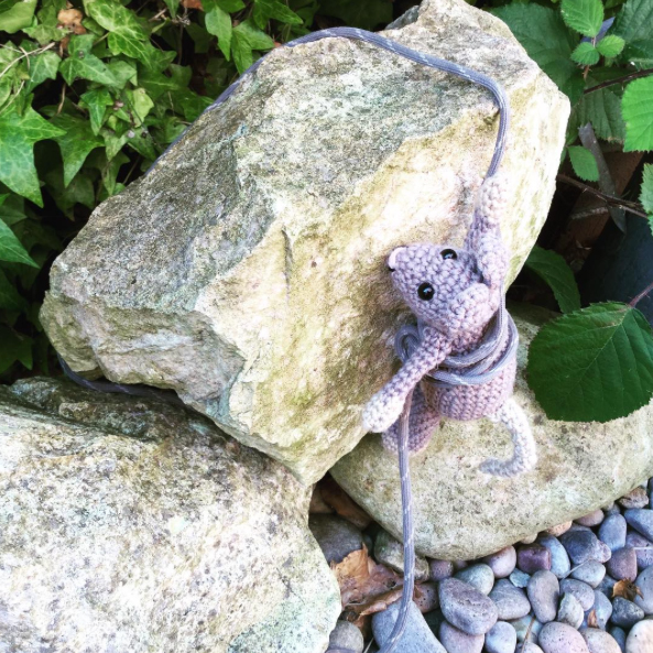 Rock climbing mouse