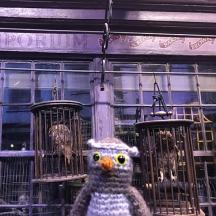 Visiting hogwarts
